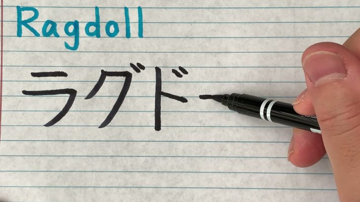 Anime character names in Japanese writing – How to write Ragdoll from My Hero Academia in Japanese