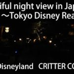 Beautiful night view in Japan ~Tokyo disneyresort~Tokyo Disneyland  CRITTER COUNTRY