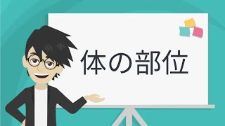 【Learn Japanese】体の部位 【Body Parts】