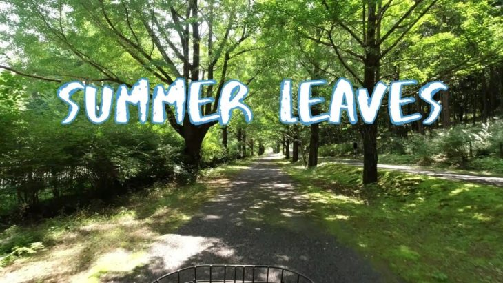 [Vlog] Cycling in Showa Memorial Park in Summer | Tokyo Sightseeing, Japan