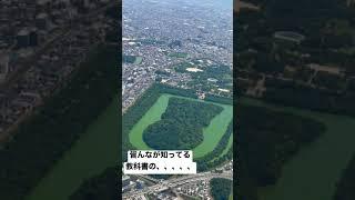 This is Japanese sightseeing spot #日本歴史#飛行機#大阪といえば#shorts
