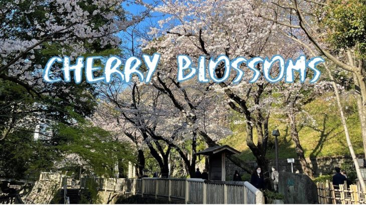 [Vlog] Cycling in Otonashi Shinsui Park with Cherry Blossoms | Tokyo Sightseeing, Japan
