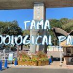 [Vlog] Tama Zoological Park   Tokyo Sightseeing, Japan